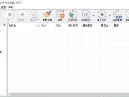 下载工具 IDM v6.35.9 绿色版